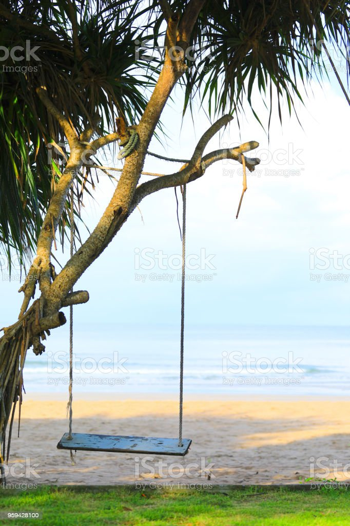 hanging chair tree how to tie a person wooden swing on near beach thailand stock photo image