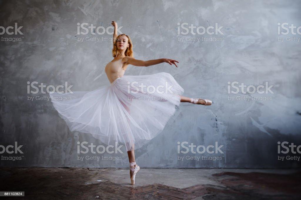 best ballet dancer stock