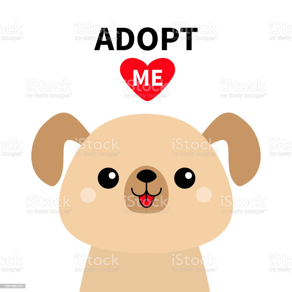 adopt me cute dog