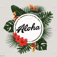 Aloha Card Design With Tropical Palm Leaves Exotic Plants ...