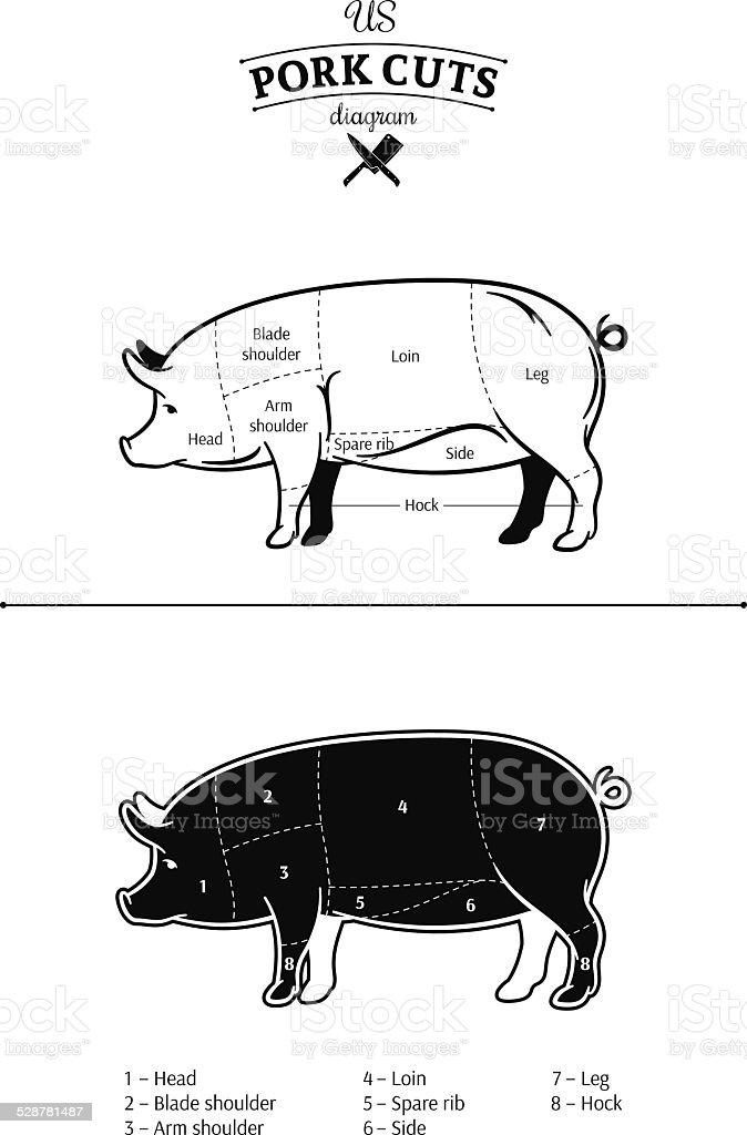4 h pig diagram 5 watt led driver circuit arm wiring data american pork cuts stock vector art more images of organs