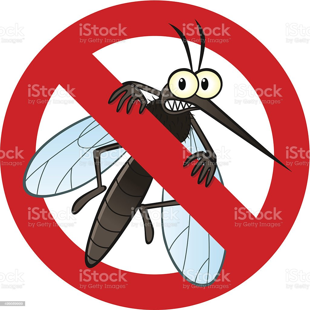 mosquito illustrations royalty-free