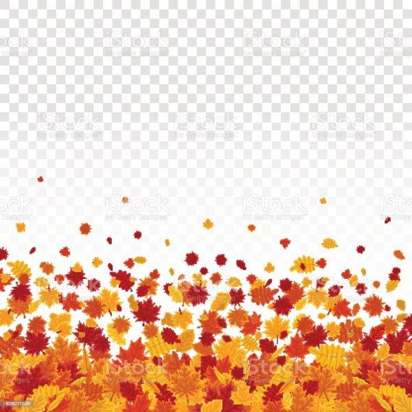 autumn leaves transparent background