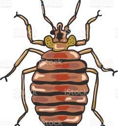 bed bug vector clip art illustration image ilustraci n de bed bug vector clipart illustration image [ 792 x 1024 Pixel ]