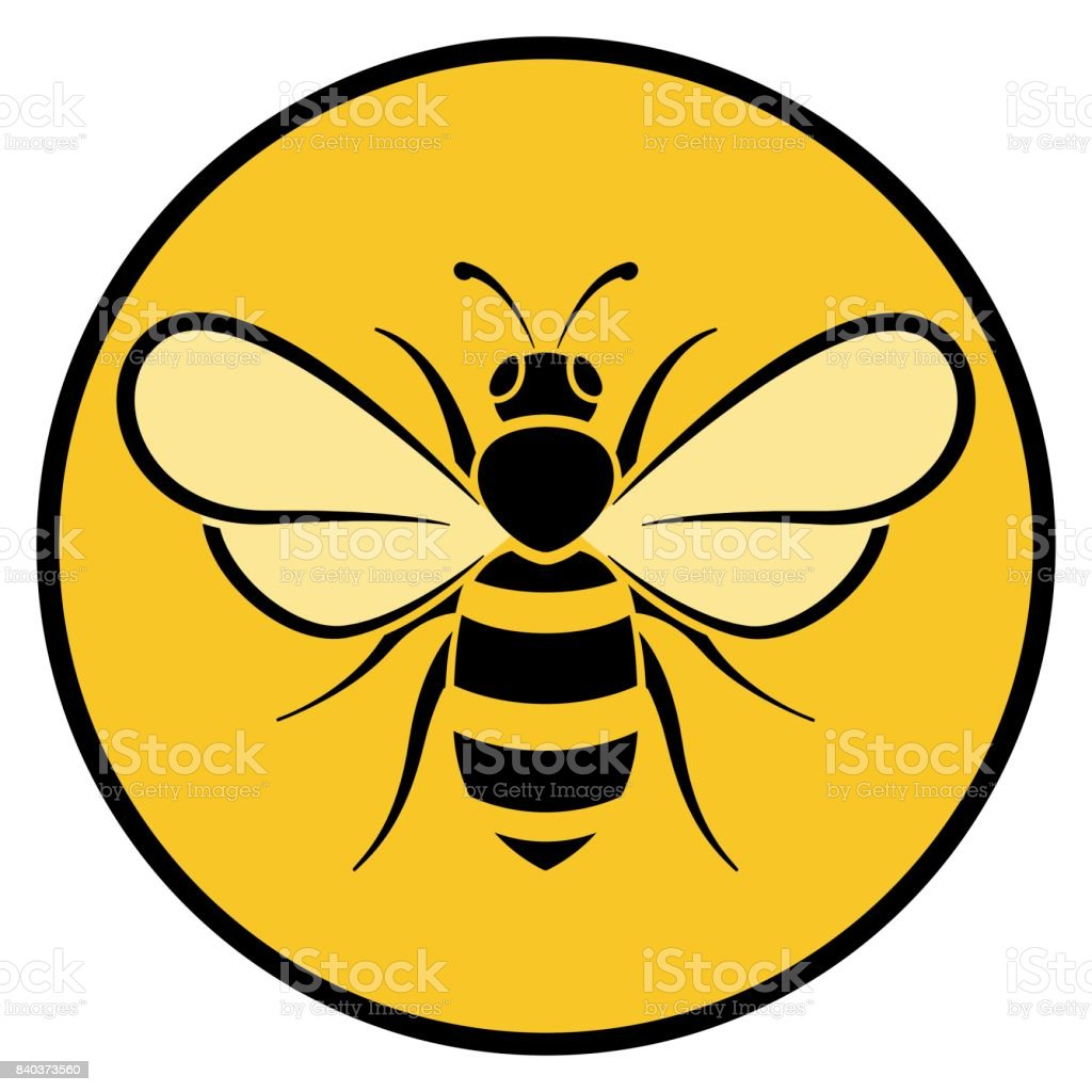 honey bee illustrations royalty-free