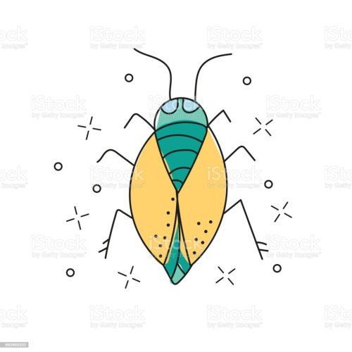 small resolution of beetle hand drawn doodle icon insect beetle vector sketch illustration for print illustration