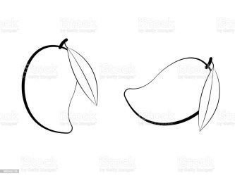 mango vector clip leaf