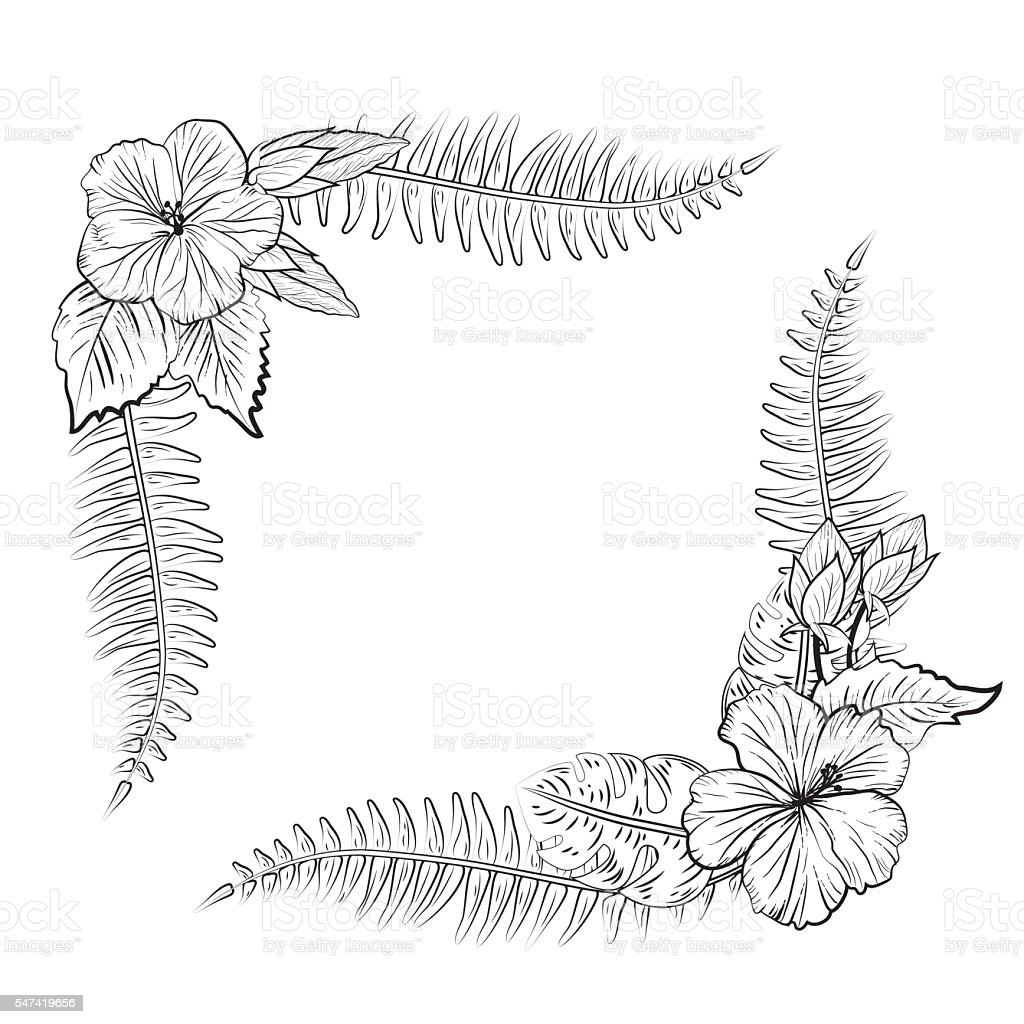 Black And White Tropical Hibiscus Floral Frame Stock