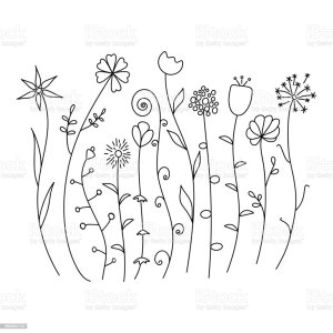 simple flowers sketch wild abstract field backgrounds vectors agricultural ukraine