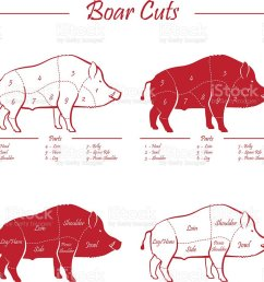 boar meat cut diagram royalty free boar meat cut diagram stock vector art amp  [ 1024 x 934 Pixel ]