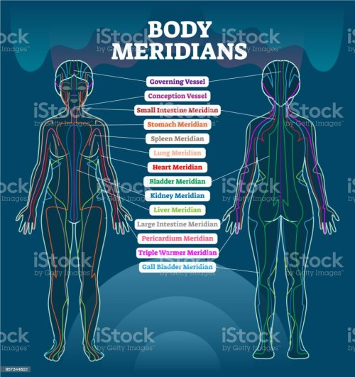 small resolution of body meridian system vector illustration scheme chinese energy rh istockphoto com medical person diagram man diagram