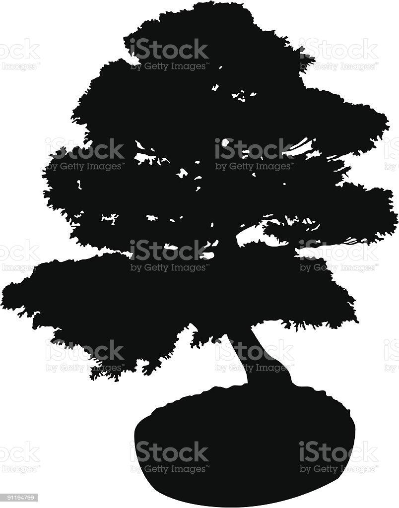 Bonsai Silhouette : bonsai, silhouette, Bonsai, Silhouette, Stock, Illustration, Download, Image, IStock