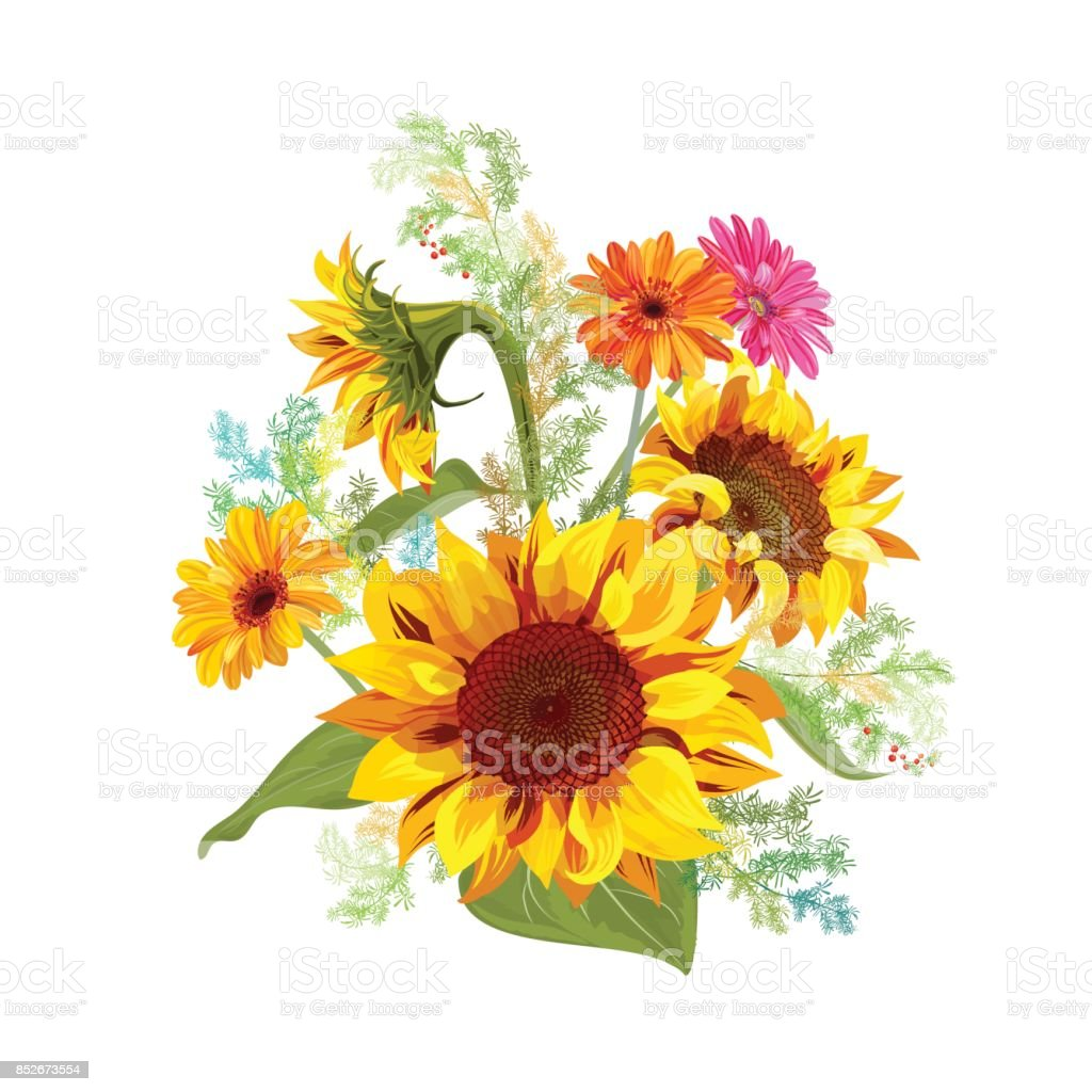 royalty free orange sunflower clip