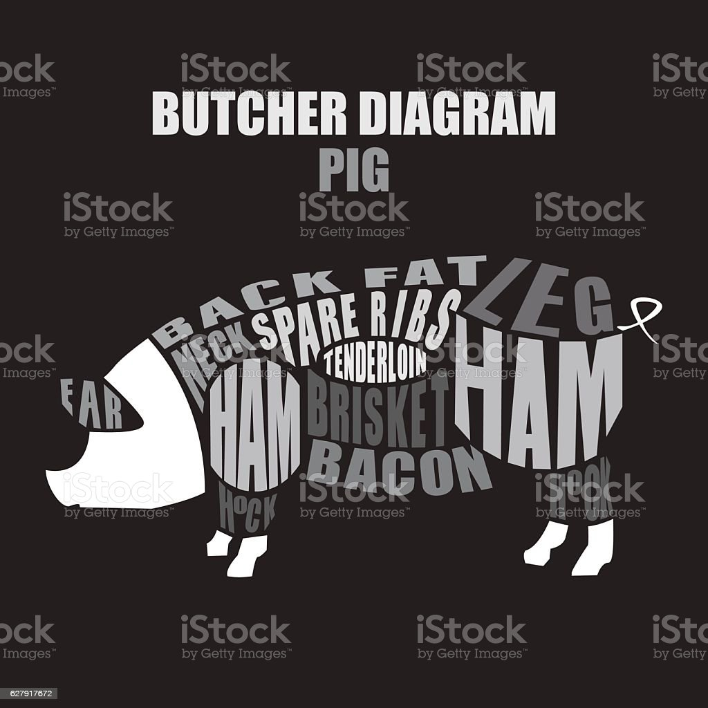 hight resolution of butcher diagram of pork pig cuts ilustraci n de butcher diagram of pork pig cuts y