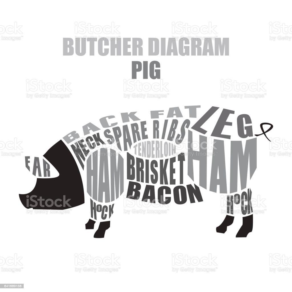 hight resolution of butcher diagram of pork pig cuts illustration