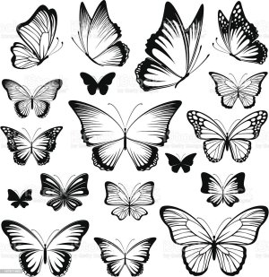butterfly vector silhouettes abstract illustration clip monarch insect vectors