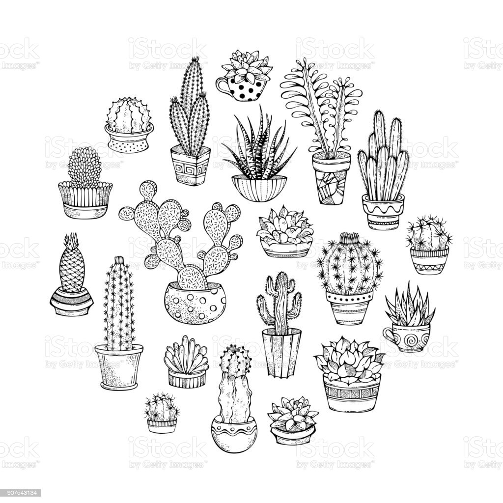 Cacti And Succulents Round Doodles Illustration Stock