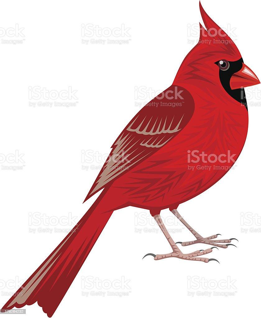 royalty free cardinal clip art