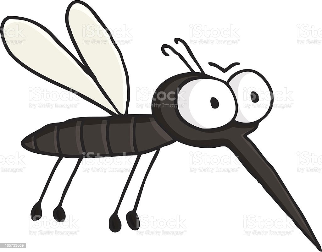 mosquito clip art vector