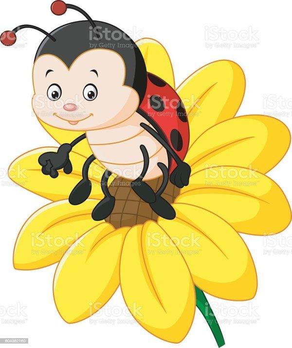 cartoon ladybug sun flower