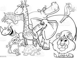 Cartoonsafaritiere Malvorlagen Stock Vektor Art und mehr ...