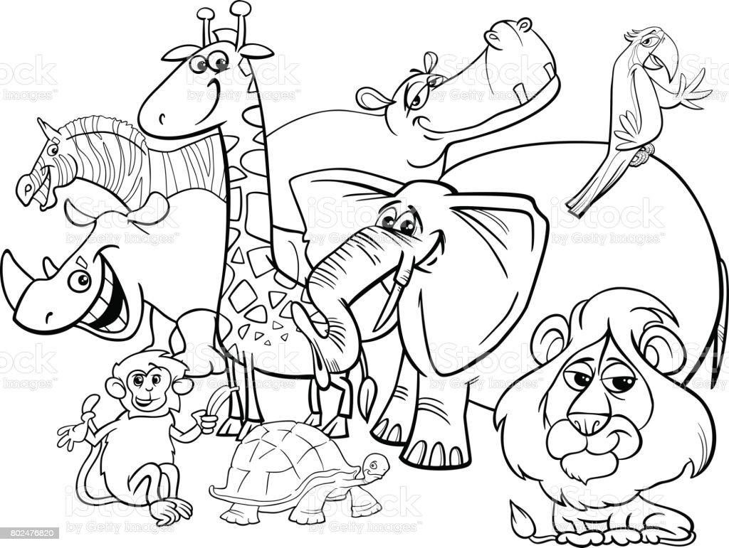Cartoonsafaritiere Malvorlagen Stock Vektor Art und mehr