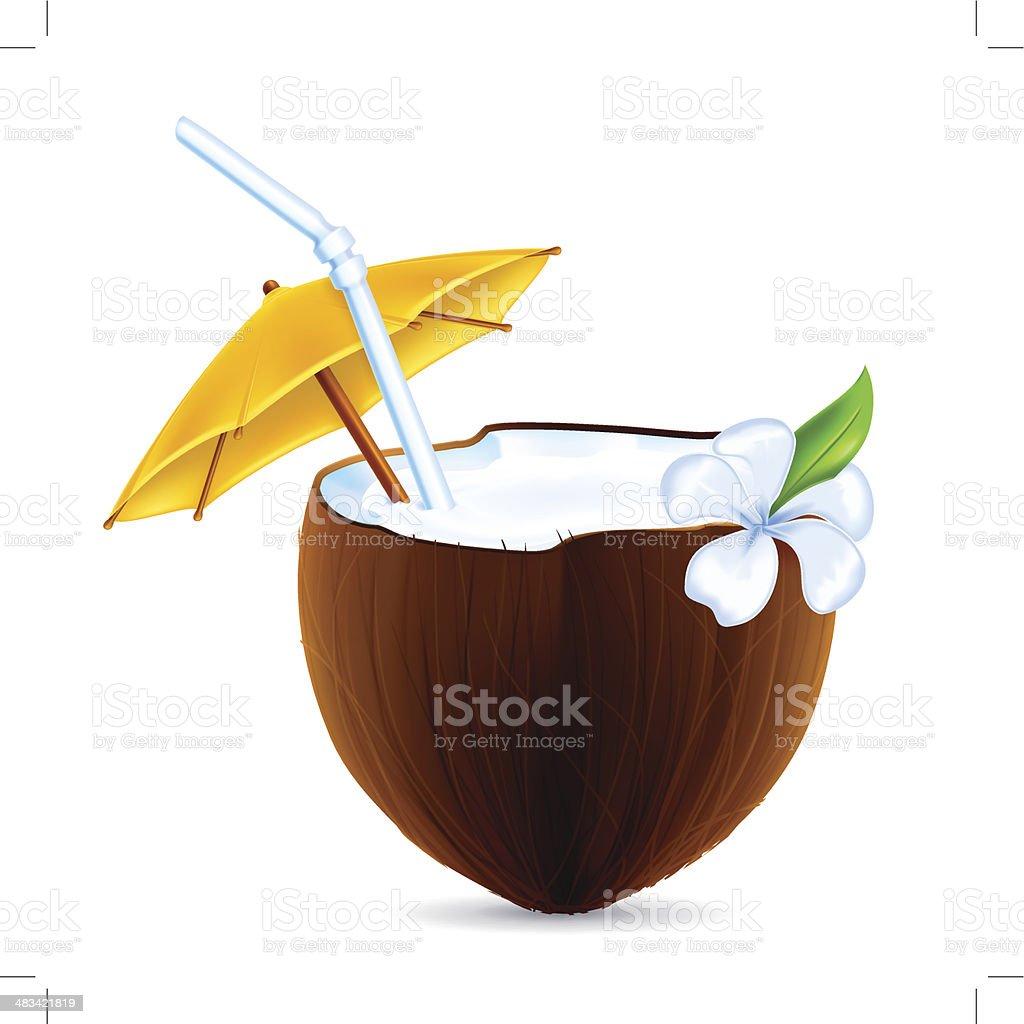 coconut clip art vector