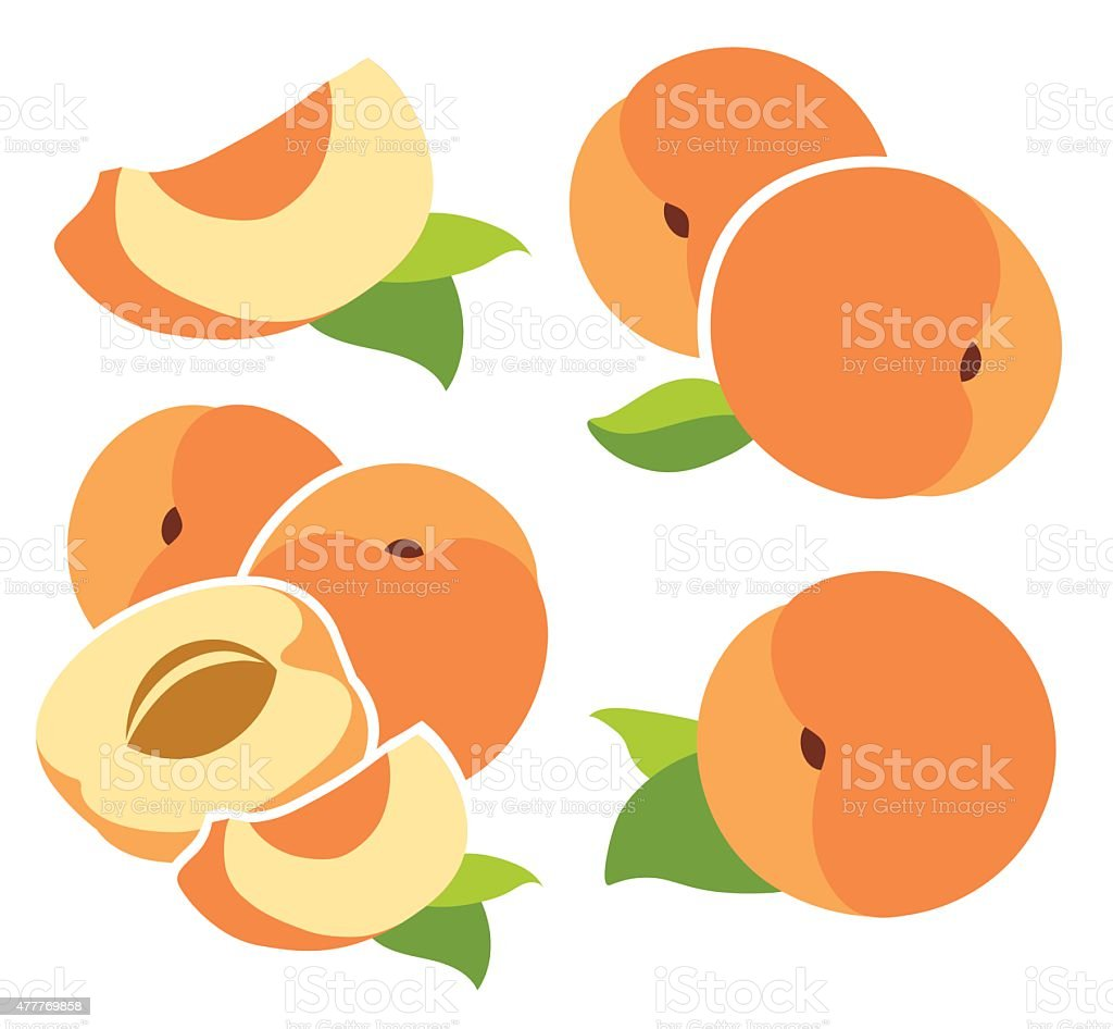 royalty free peach slices clip