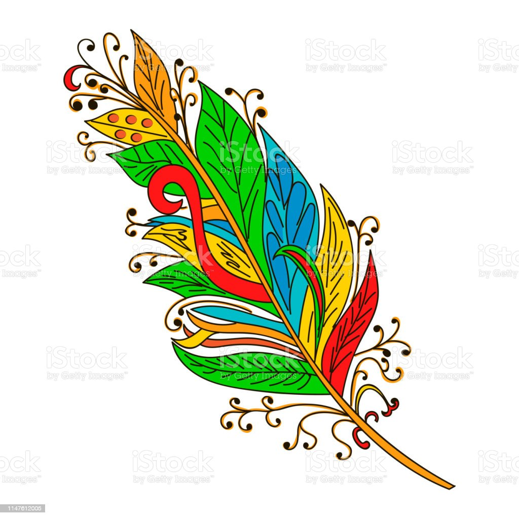colorful feather vector illustration