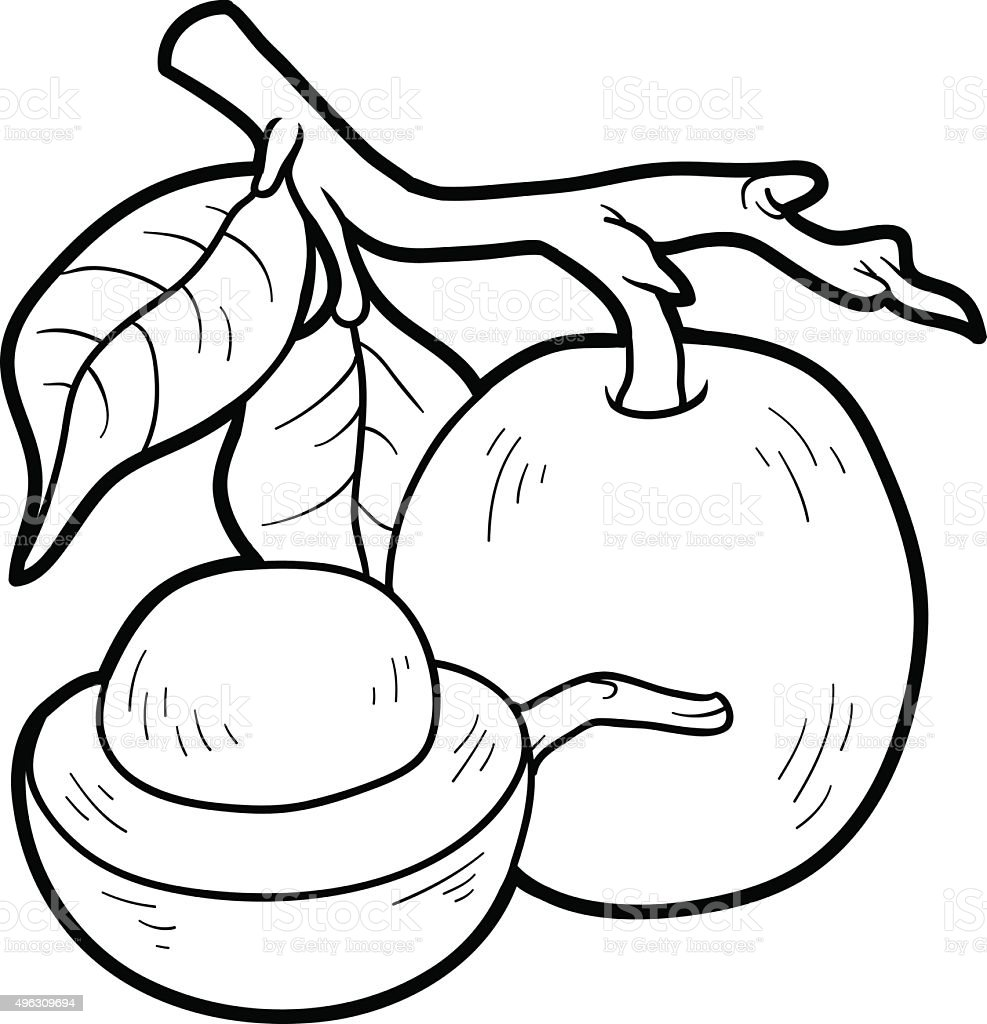 Coloring Book For Children Fruits And Vegetables Stock