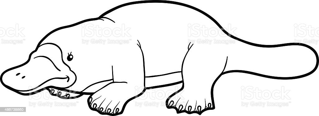 Coloring Book For Children Platypus Stock Vector Art