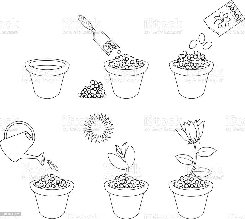 Ilustración de Página Para Colorear Instrucciones Sobre