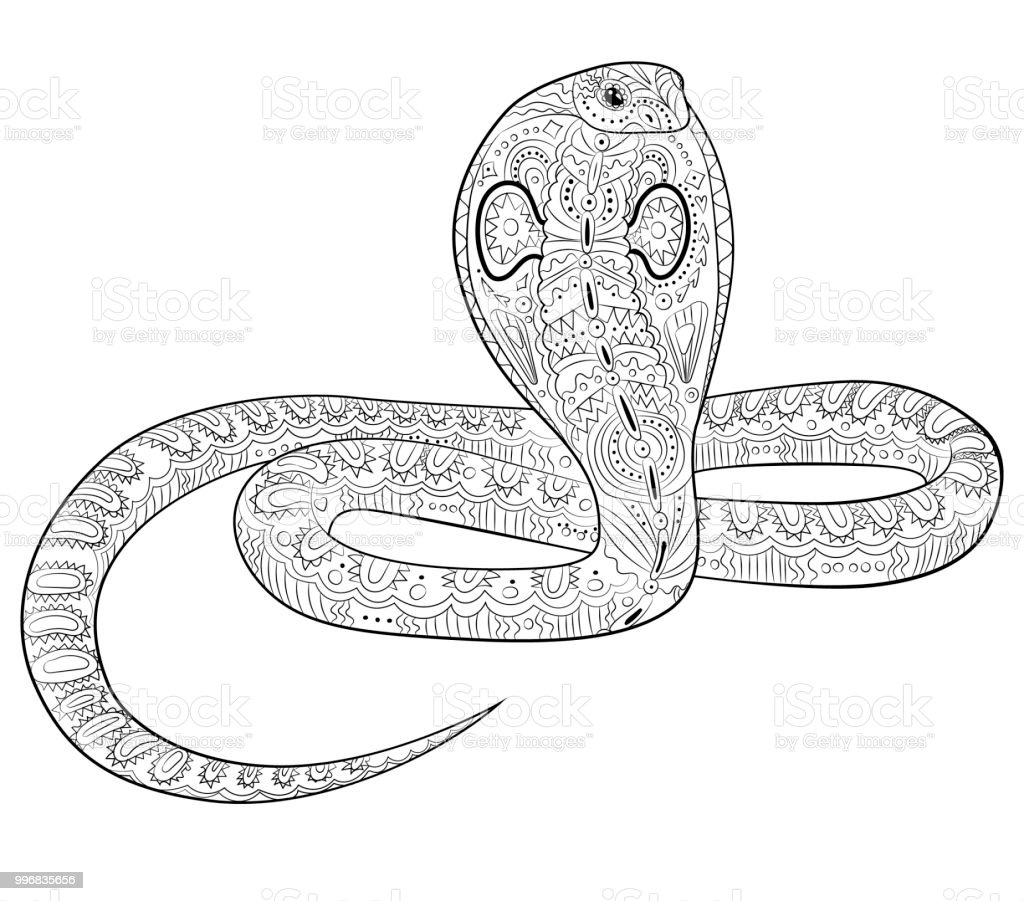 Schlangen Malvorlagen Zum Ausmalen