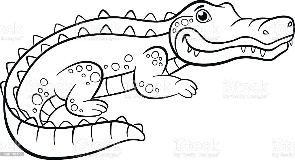 Des Pages À Colorier Animaux Peu Joli Alligator Vecteurs