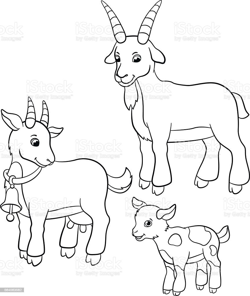 Coloring Pages Farm Animals Goat Family Stock Vector Art
