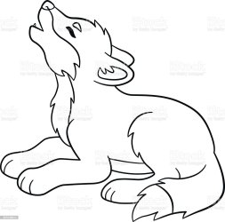 wolf coloring baby cute pages drawing wolves howls realistic cartoon illustration animal arctic vector activity female wildlife hair body