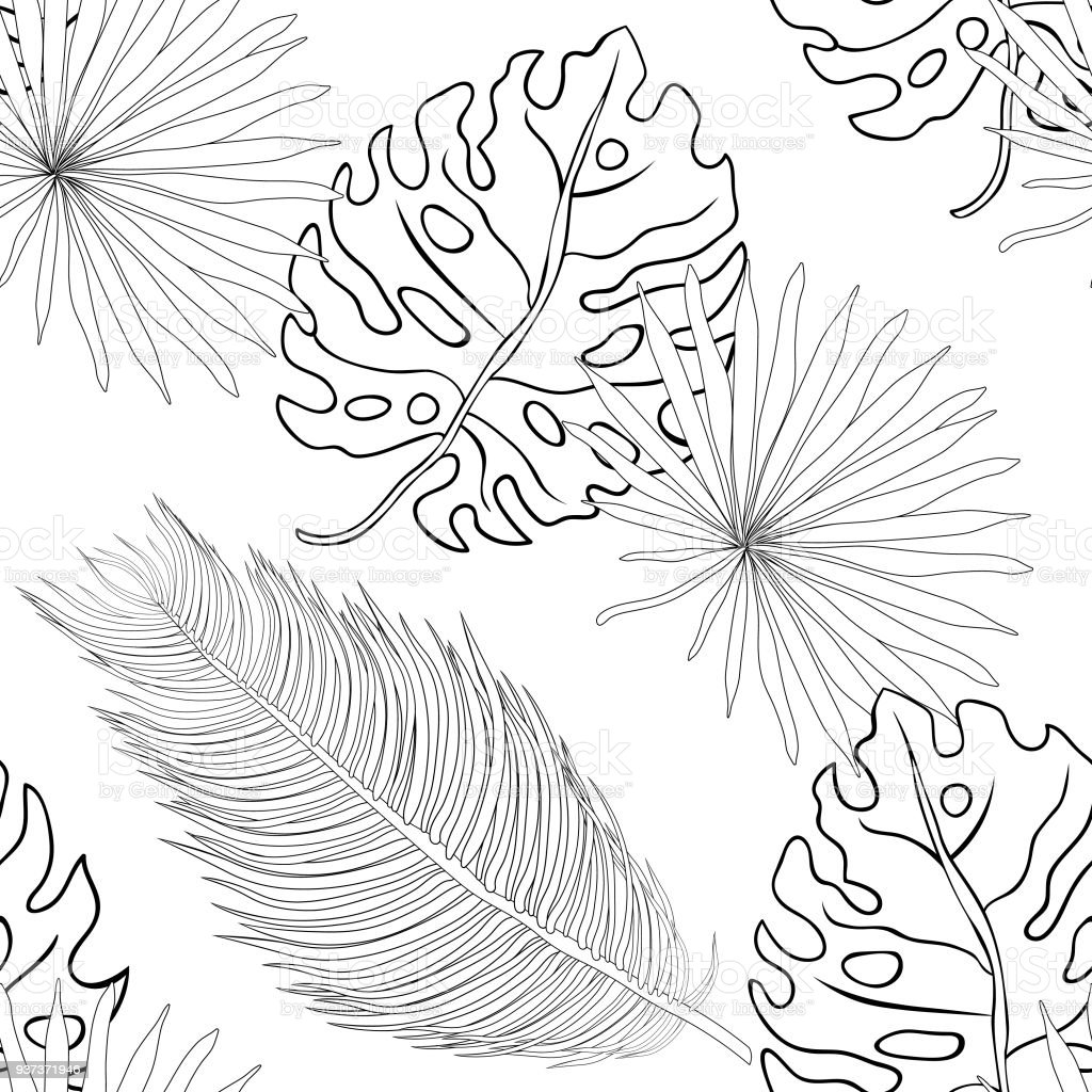 Coloring Seamless Pattern Natural Tropical Palm Leaves