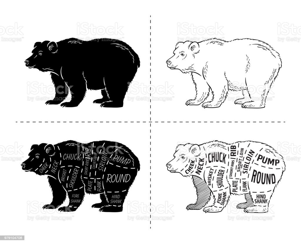 hight resolution of cut of bear set poster butcher diagram bear vintage typographic hand drawn