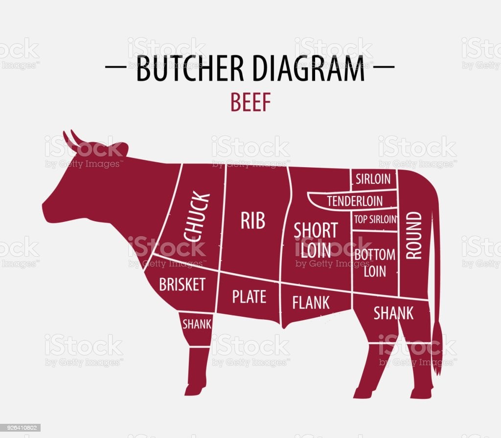 groin diagram cow meat wiring diagram yer groin diagram cow meat [ 1024 x 896 Pixel ]