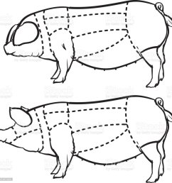 cut of pig set hand drawn outline pig isolated on white background drawing vector [ 986 x 1024 Pixel ]