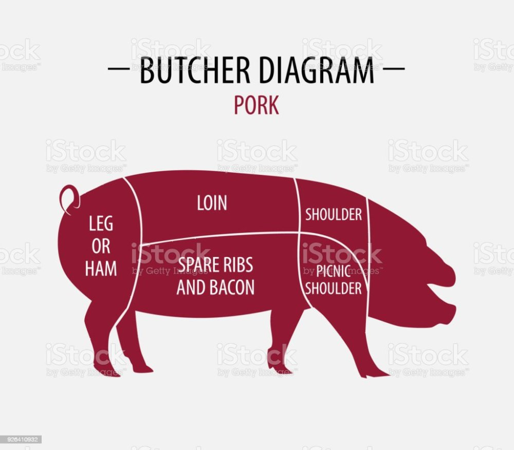 medium resolution of cut of pork poster butcher diagram for groceries meat stores butcher shop