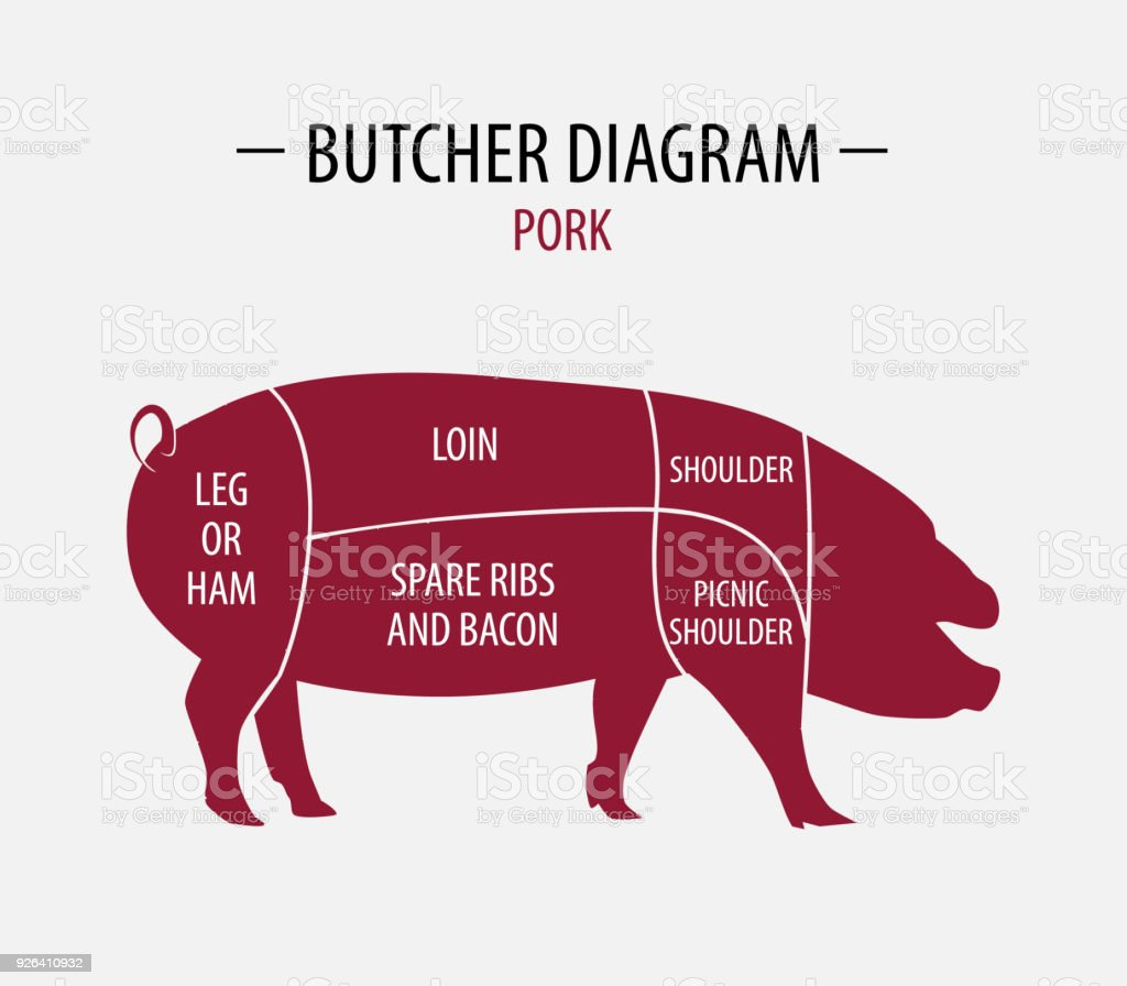 hight resolution of cut of pork poster butcher diagram for groceries meat stores butcher shop