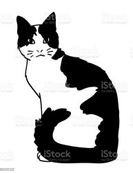 7 383 Black And White Cat Illustrations Royalty Free Vector Graphics & Clip Art iStock