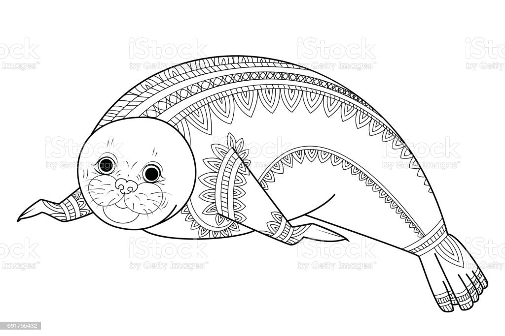 Cute Seal Vector Wild Animals Coloring Book For Adult