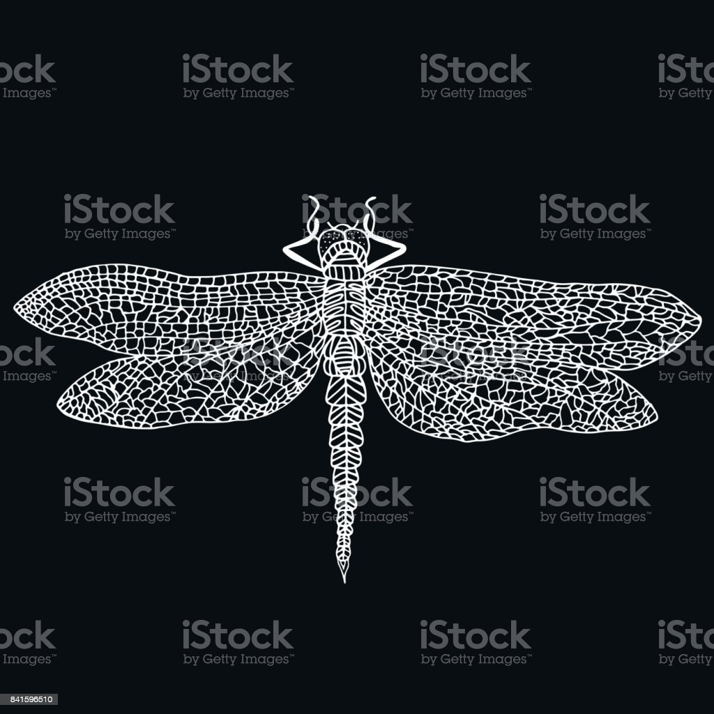 royalty free silhouette of dragonfly