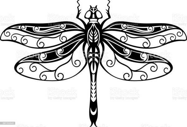 decorative dragonfly stock vector