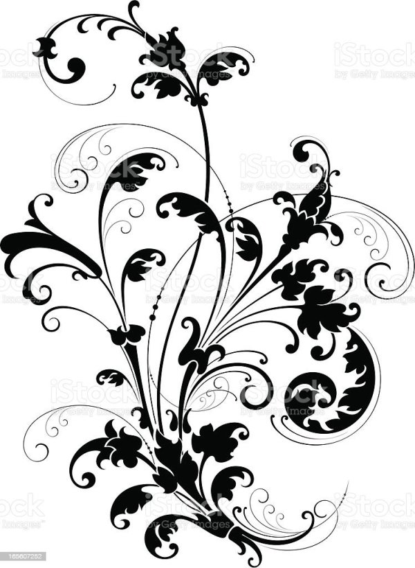 decorative floral scroll stock