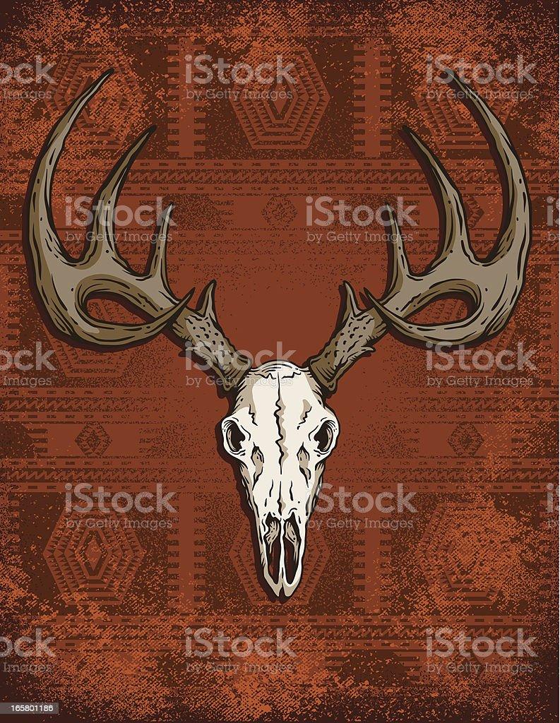 Deer Skull Vector : skull, vector, Skull, Western, Stock, Illustration, Download, Image, IStock