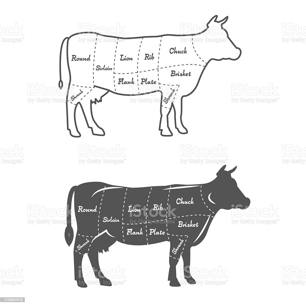 beef cow cut diagram simple atp detailed illustration scheme or chart american