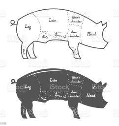 detailed illustration diagram scheme or chart of pork cuts illustration  [ 1024 x 1024 Pixel ]